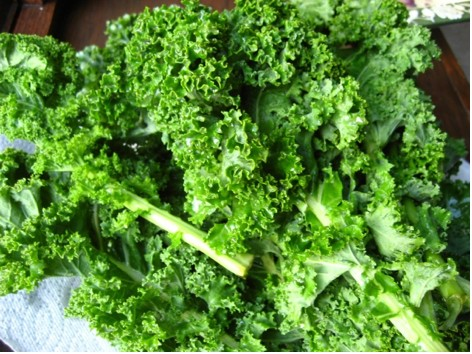 How We Love Kale! Delicious Healthy Kale Recipes