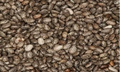 chia-seed-433x400